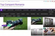 Director de articole online pentru siteuri de prezentare firme